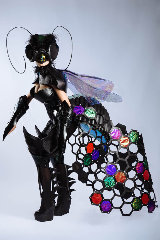 The Artistic Evolution of the Insect by Lindy Van Tuil